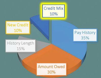 Credit Mix - 10%